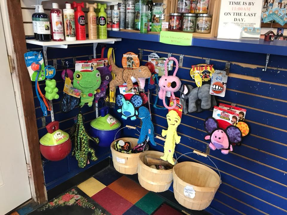 Dog Grooming Supplies Rochester Ny
